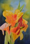 Yellow Cana Lily, watercolor